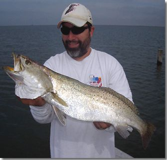 Very Nice Speckeld Trout Fishing Texas Bay Systems With Captain John Frankson.